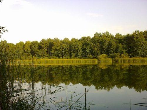 Лакаш озеро