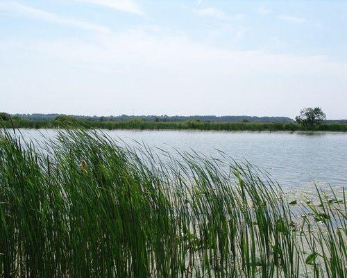 Сельное озеро