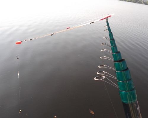 Делаем ловлю рыбы осенью на боковой кивок результативной