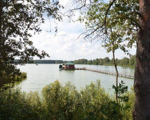 Клинский рыбхоз, участок «Владимировка»