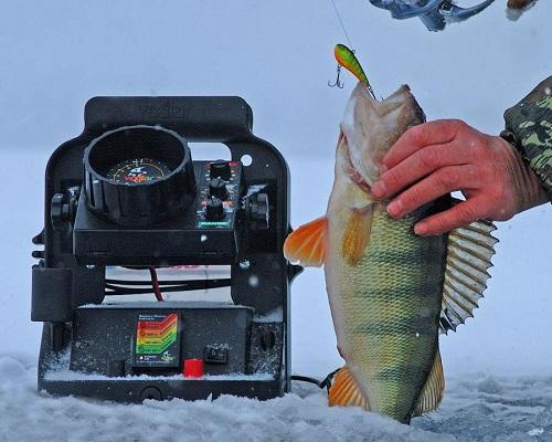 Эхолоты для зимней рыбалки: особенности приобретения и эксплуатации эхолотов для зимней рыбалки