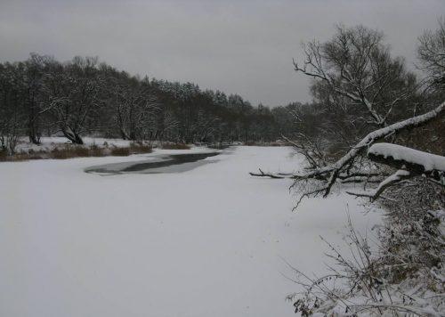 Ловля голавля в декабре