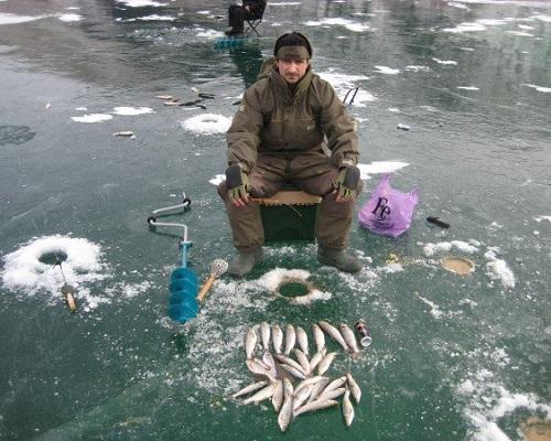 Ловля голавля зимой: голавль в декабре на мормышку без насадки