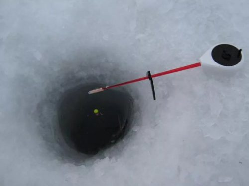 Ловля карпа зимой