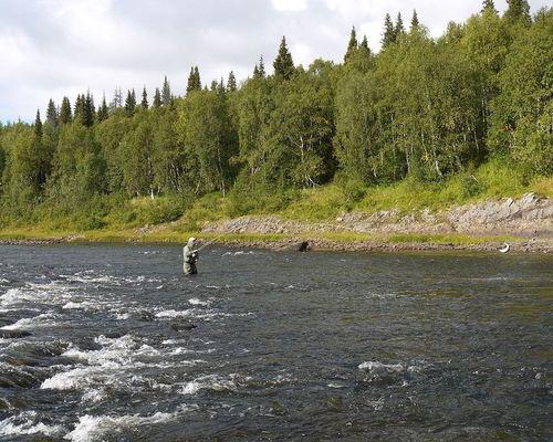 Ловля лосося на реке Варзуга