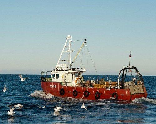 Морская рыбалка на катере в Баренцевом море, Териберка