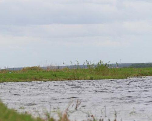 Старая Тишь озеро