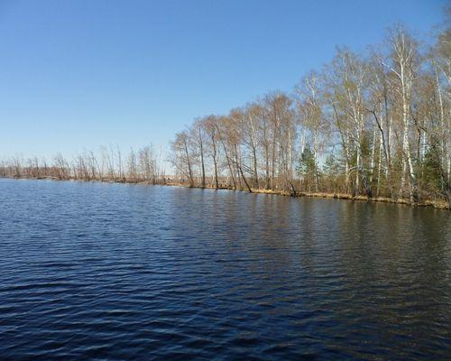 Великое озеро (Рязанская область)