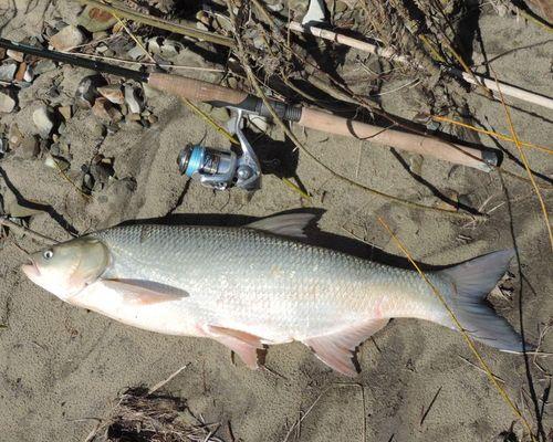 Рыбалка в Пензенской области с Денисом Петровым