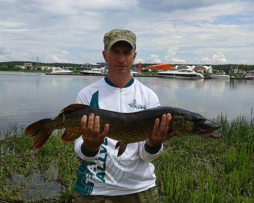 Рыбалка на Иваньковском водохранилище с Олегом Ладыгиным
