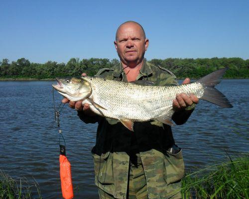 Рыбалка в Волгоградской области с Андреем Рекуненко