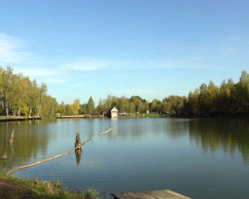 Рыболовный клуб «Дикий карп»