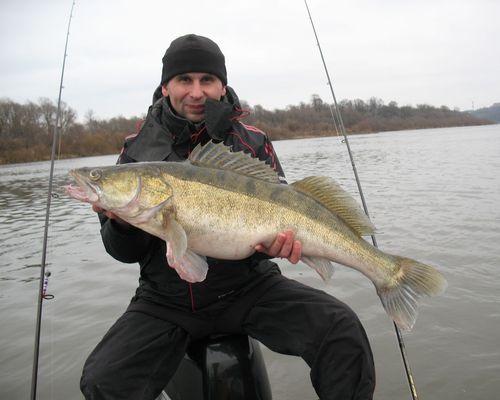 Профессиональная рыбалка с катера на реке Ока
