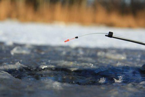 Ловля краснопёрки на мормышку зимой