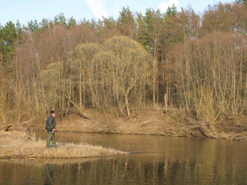 Ловля краснопёрки весной