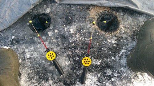 Ловля краснопёрки зимой