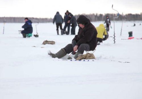 Ловля плотвы в феврале