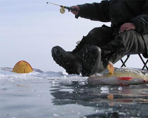 Ловля с прозрачного льда — особенности лова на растущем прозрачном льду без снега