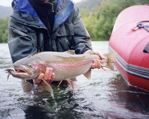 Рыбалка на реке Жупанова (база «Дзензур»)