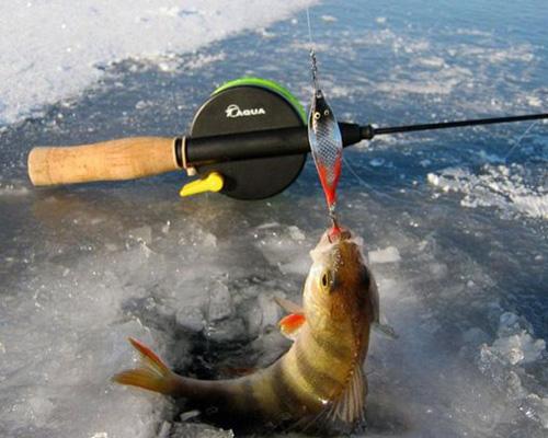 Техника ловли на блесну зимой