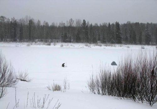Ловля ельца зимой