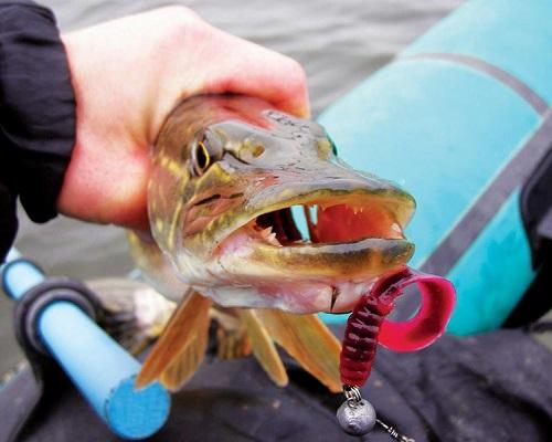 Рыбалка на твистер и техника ловли для начинающих