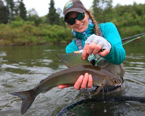 Увлекательная рыбалка на хариуса в чистых водах Большого Чивыркуя