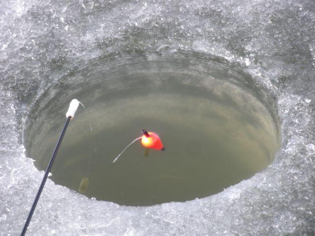 Ловля плотвы зимой на поплавок и кивок