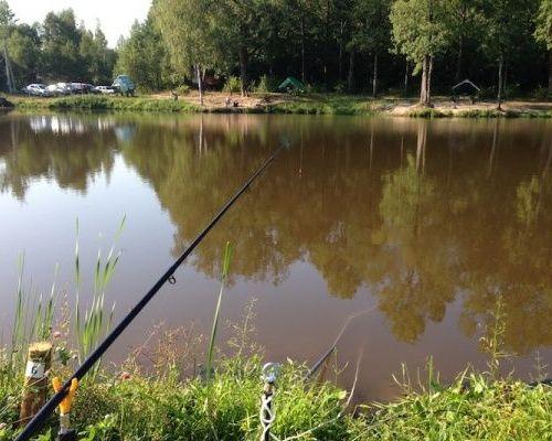 Рыбалка в Бухловке