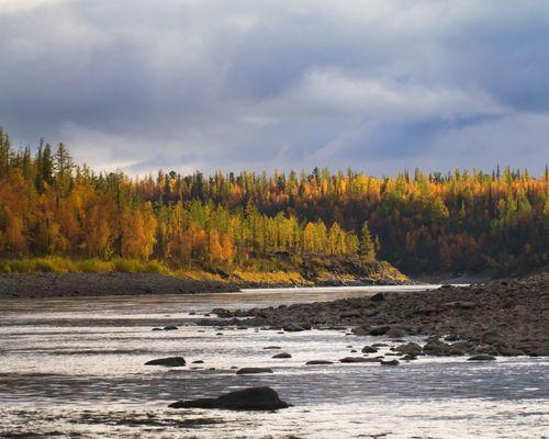 Рыбалка на тайменя на притоках Енисея и Нижней Тунгуски