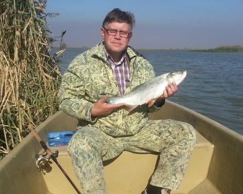 Рыболовная база отдыха «Дом в дельте»