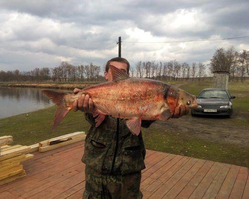 Рыбалка в Курской области с Романом