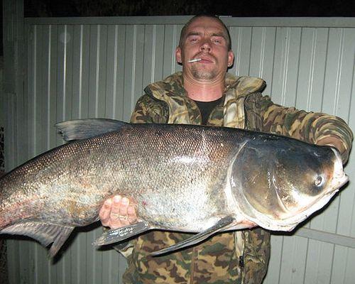 Рыбалка в Краснодарском крае с Романом Мищенко