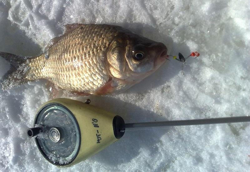 Мормышки для зимней рыбалки на карася