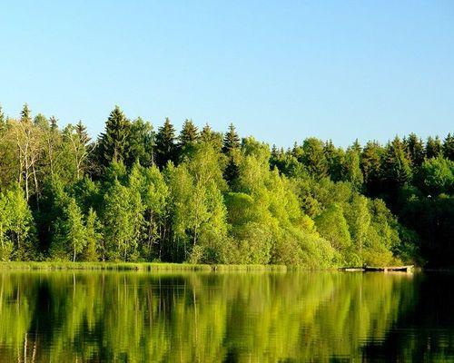 Рыбалка на озере Бойково, клуб «Завидово-СТД»