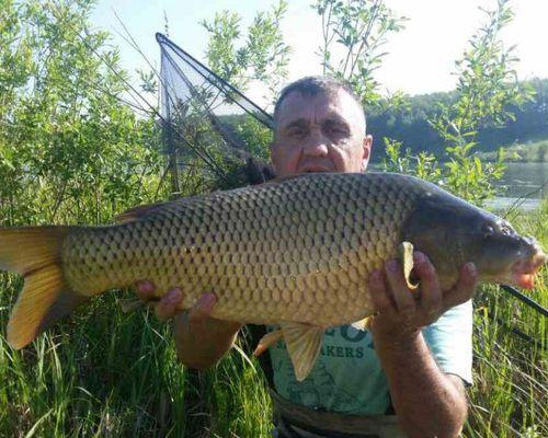 Рыбалка в Новоалександровке