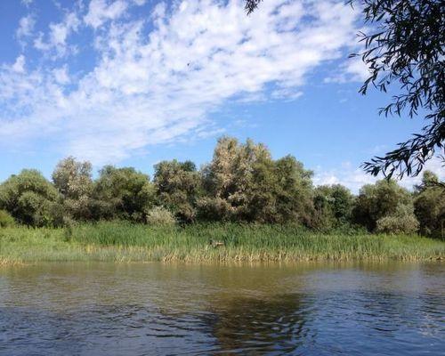 Рыболовно-охотничья база «Новинская»