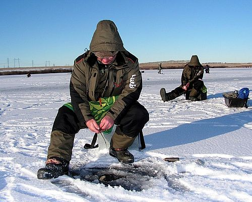 Платный водоем в Чесноково