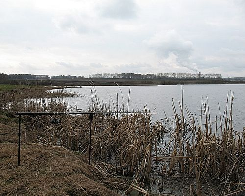 Платный пруд в посёлке Октябрьский