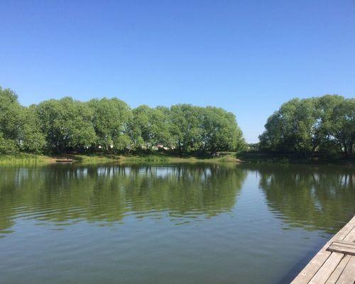Рыбалка на пруду «Авиатор»