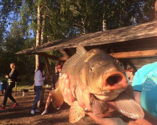 Ягуновское рыбное хозяйство