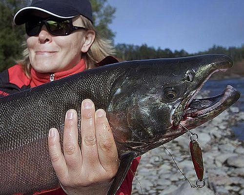 Рыбалка со сплавом по реке Сопочная