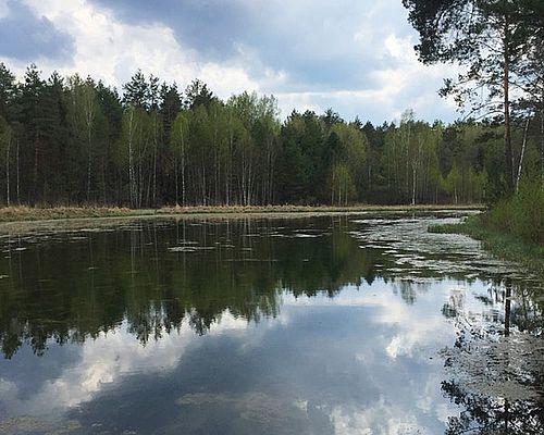 Рясник озеро