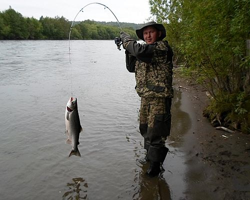 Рыбалка на реке Козыревка