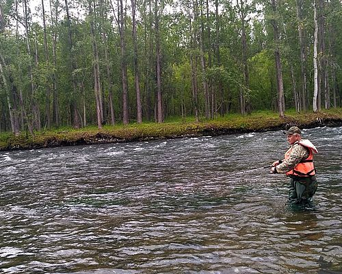 3 в 1: рыбалка на реках Камчатка и Ича, Морская рыбалка