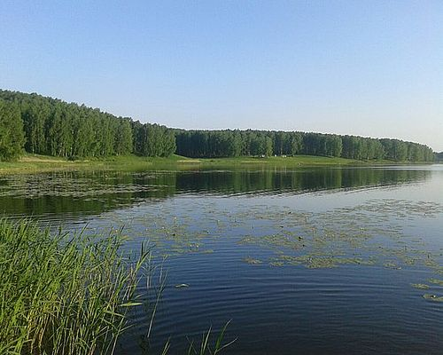 Станционно-Ояшинский пруд
