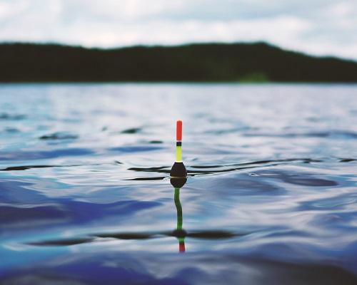 Чемпионат России по ловле поплавочной удочкой с 5 по 9 июля 2018 года в г. Москва