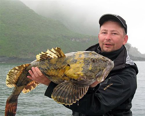 Рыбалка в бухтах Вилючинская, Жировая, Русская (морская и речная)