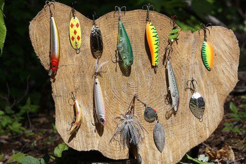 Ловля щуки в июне