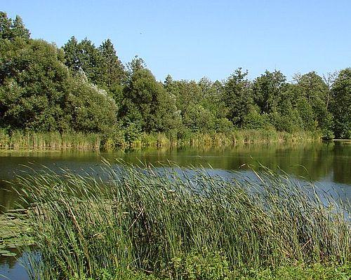 Любожа озеро